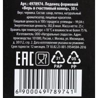 Леденец «Верь в счастливый конец», со вкусом черники, 30 г.